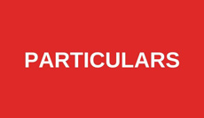 Submit an article to <em>Particulars</em>
